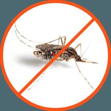 обработка от комаров